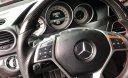 Cần bán gấp Mercedes C300 Plus AMG năm sản xuất 2013, màu đỏ