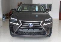 Bán Lexus NX300h đời 2015, màu đen, xe nhập - LH ngay 0986505171  giá 3 tỷ 71 tr tại Hà Nội