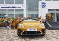 Bán Volkswagen New Beetle năm 2017, màu xám (ghi), xe nhập giá 1 tỷ 469 tr tại Hà Nội