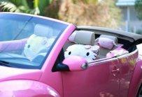 Cần bán lại xe Volkswagen Beetle 2009, màu hồng, nhập khẩu giá 668 triệu tại Vĩnh Long