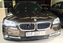 Bán BMW 5 Series 520i sản xuất 2015, màu nâu, nhập khẩu nguyên chiếc đẹp như mới giá 1 tỷ 590 tr tại Tp.HCM