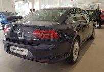 Cần bán xe Volkswagen Passat BlueMotion  2018 giá 1 tỷ 450 tr tại Tp.HCM