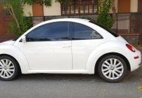 Bán sêu xe thể thao New Beetle, Tubo, nhập khẩu, chỉ 485tr giá 485 triệu tại Tp.HCM