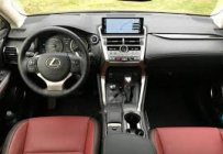 Bán Lexus NX 300 sản xuất 2017, màu xám, xe nhập giá 3 tỷ tại Quảng Bình