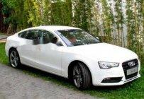 Bán Audi A5 sản xuất 2013, màu trắng giá 1 tỷ 250 tr tại BR-Vũng Tàu