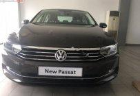 Bán xe Volkswagen Passat 1.8 Bluemotion đời 2018, màu nâu, nhập khẩu, công nghệ an toàn giá 1 tỷ 450 tr tại Đà Nẵng