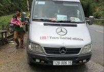 Cần bán Mercedes 313 CDI năm 2009, màu bạc, nhập khẩu giá 370 triệu tại Lạng Sơn