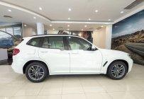 Bán BMW X3 đời 2019, nhập khẩu, giá tốt giá 2 tỷ 499 tr tại Tp.HCM