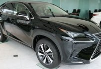 Bán xe hạng sang - Chính hãng 100%: Lexus NX 300 sản xuất 2020, màu đen giá 2 tỷ 560 tr tại Hà Nội